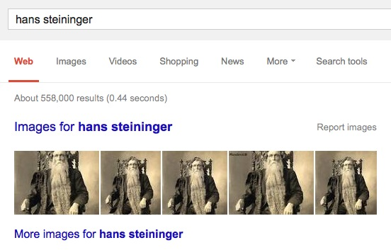 google results for hans Steininger